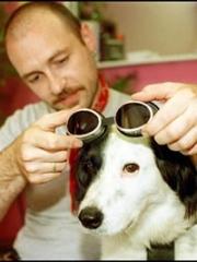 cane_occhiali.jpg
